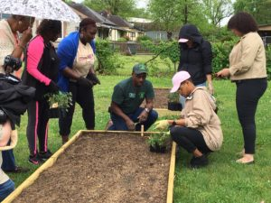 A Master Gardener advises community members regarding the planting of a raised garden bed.