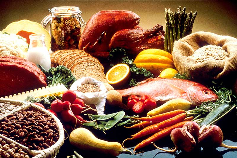 Picture of a variety of food items (proteins, grains, fruits and vegetables) to represent Nutrition Education