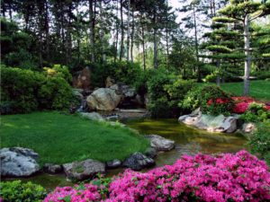 Stream running through a garden. Lush grass and rocks border the stream with lovely pink flowers in the foreground. Tall trees and some bushed are in the background.